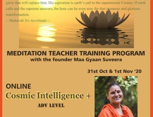 CI Plus Adv Level Teacher Training Program